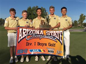 DV Boys Golf State Champs